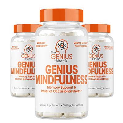 Genius Mindfulness Reviews